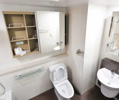 Toilettes et hygiène : et si on fait l'option pour des WC japonais ?