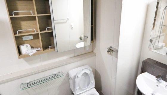 Toilettes et hygiène: et si nous options pour des WC japonais?